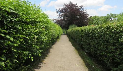 Kleingartenanlagen heute